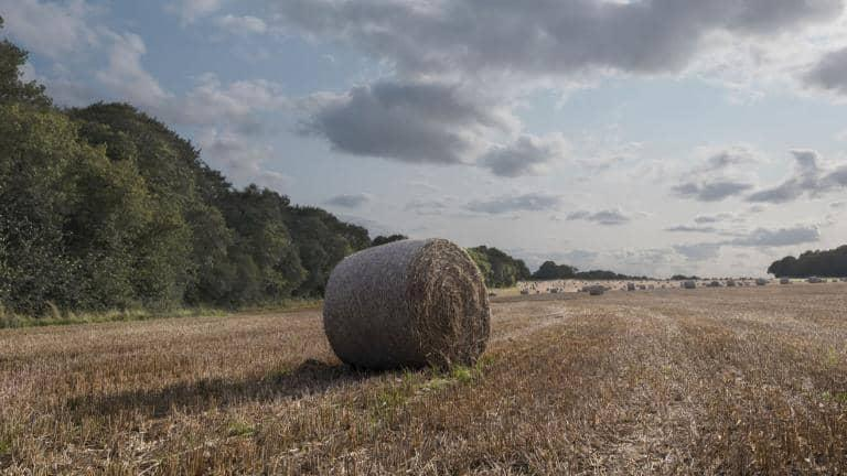 A field surrounded with trees, clouds in the sky and a bale of hay sitting in the centre.