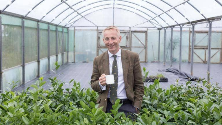 A man holding a cup of tea smiles as he stands amongst tea plants growing inside an industrial greenhouse