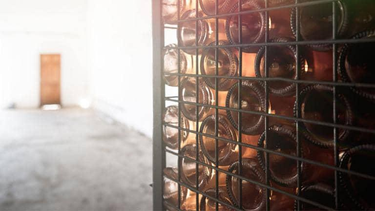 Wine bottles in a wine rack at a vineyard