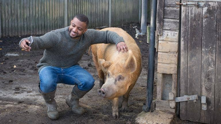 A man takes a selfie with a pig on a farm