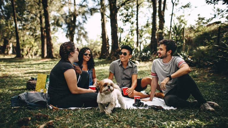 Friends having a picnic with a small dog running around