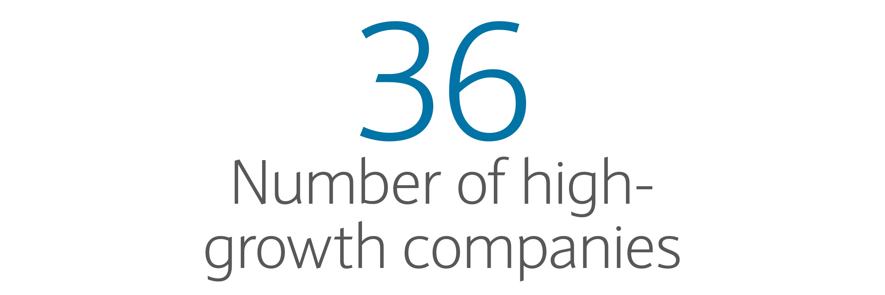 36: Number of high-growth companies