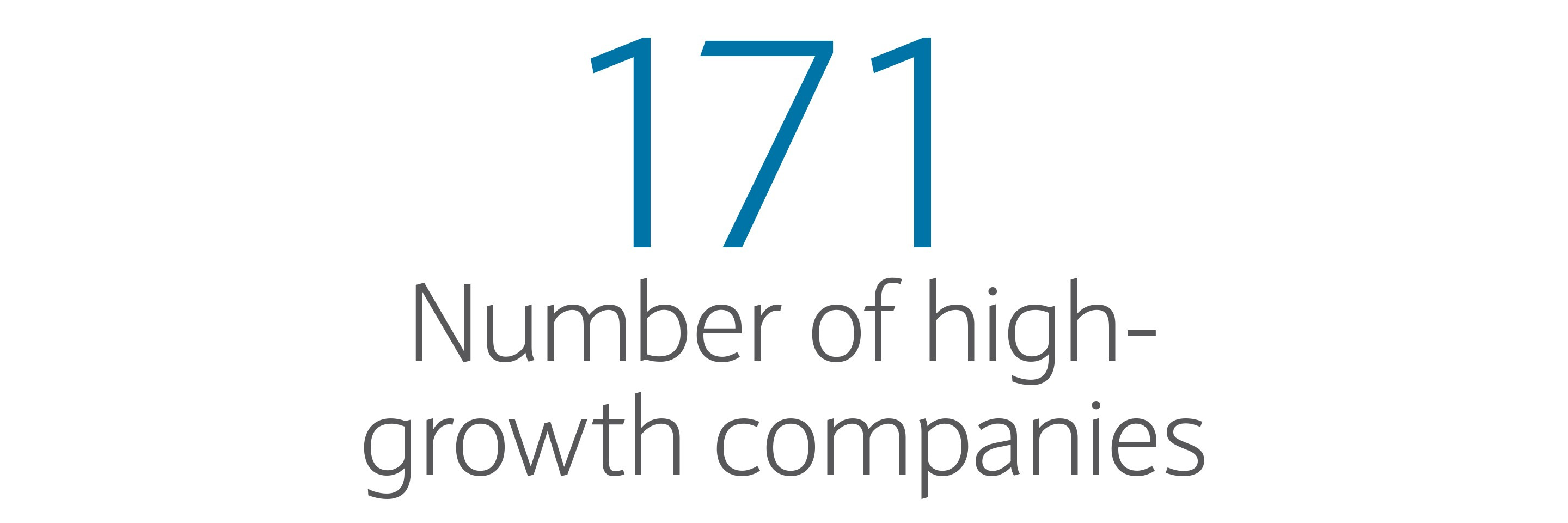 171: Number of high-growth companies