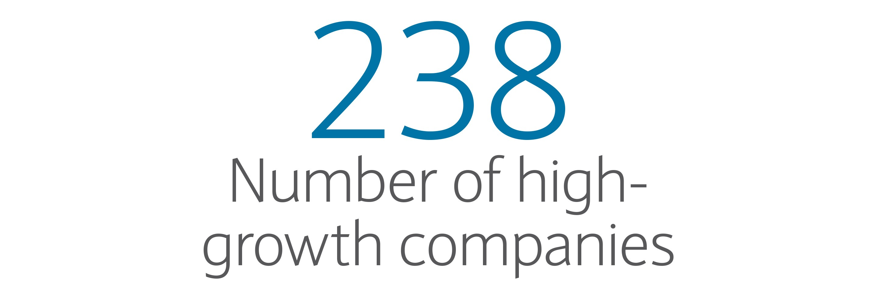 238: Number of high-growth companies